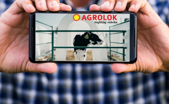 Żywienie jako filar postępu genetycznego w stadach krów mlecznych