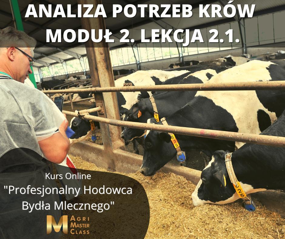 """Analiza potrzeb krów – tematem 2 modułu kursu """"Profesjonalny Hodowca Bydła Mlecznego"""""""