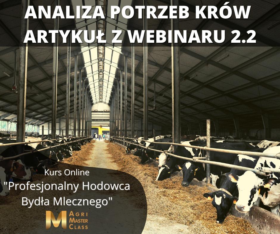 Zrozumieć krowę, czyli jak zaspokoić jej potrzeby – webinar 2.2